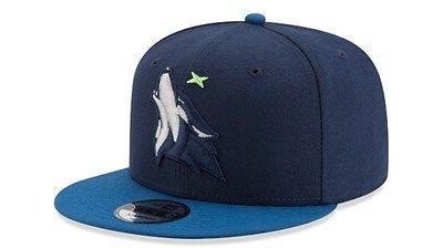Minnesota Timberwolves 9FIFTY NBA Snapback Hat Cap Wolves